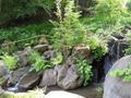 あずまや裏の滝