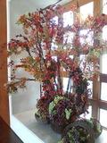 ロビーの花も秋らしい