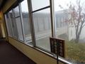 廊下から見える風景