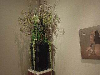 廊下にあった植物
