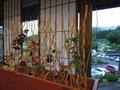 花の多い旅館
