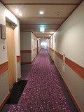 客室につづく廊下