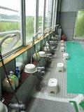 開放的な洗い場