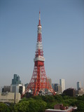部屋から見た東京タワー(昼)