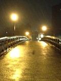 浅野川(中の橋)