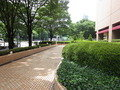 ホテル前の歩道