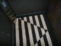 エレベータの中の絨毯