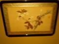 花の絵の展示