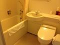 広くて新しい浴室