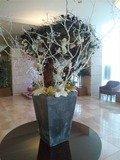大きな花壇です。