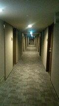 豪華な内廊下