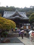 泉質はGOOD。しかし近くの観光地修善寺もいまいち。。。高級旅館でもないため、あえて訪れる利点は低い。