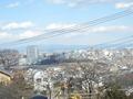 旅館からの眺望