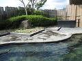 露天風呂の庭園