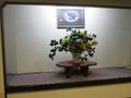 館内の飾り