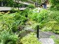庭園の小川