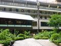庭園からの旅館建物