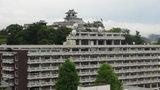 高知城のすぐ側です