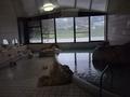 写真クチコミ:温泉からの風景