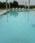 ホテル側からプール