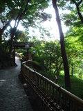 庭園内の小道