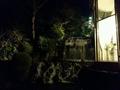 庭園の滝ライトアップ