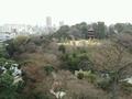 セレニティガーデンからの眺望