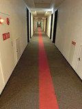 赤が鮮烈な印象の廊下