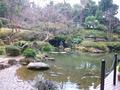 中庭の日本庭園