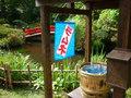 菊華荘のお庭