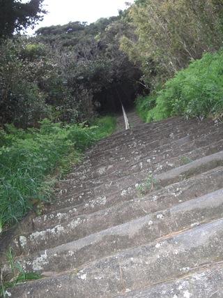 写真クチコミ:富久三苑の周辺