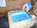 ペットの温泉