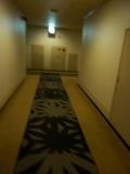 客室階の廊下と消火設備