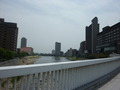 武庫川(ホテル横の宝来橋より)