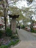 宝塚市の名所「花のみち」