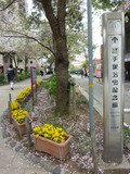 宝塚市の名所、「手塚治虫記念館」