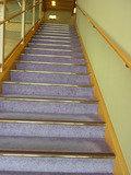 1階ロビーから吹き抜けを眺めて2階に上る、素敵な階段
