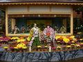 二本松菊祭り