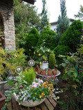 ガーデンの植物