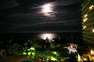 夜は月の明かりが印象的でした