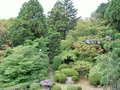 庭園です。