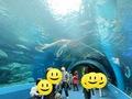 EPSON水族館