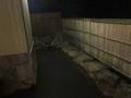 1階の露天風呂 展望大浴場