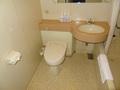 トイレと洗面台です