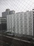南側の部屋からの眺望