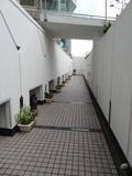 駐車場への通路