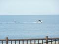 写真クチコミ:朝の海