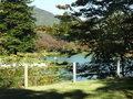 ウエスト入り口前の池