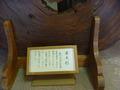屋久杉の展示