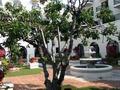 フロント前庭2
